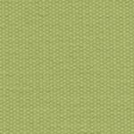Lime (061) Acrilico