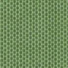 Avocado (139) Acrilico Sunbrella®